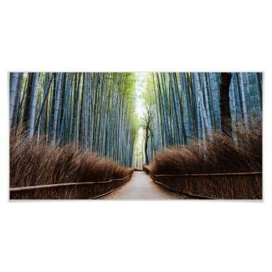 Poster Colombo - The Bamboo Cave in Japan - Panorama