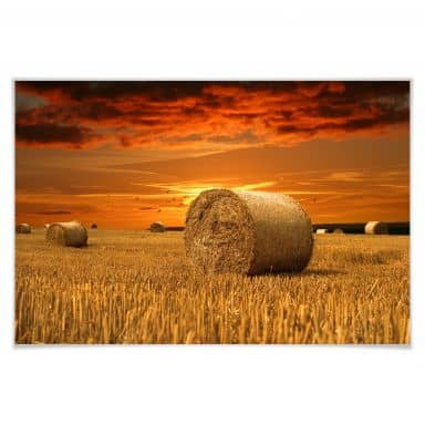 Poster straw bales
