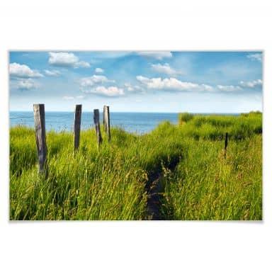 Poster Weg naar Zee