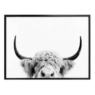 Poster Sisi & Seb - Bull