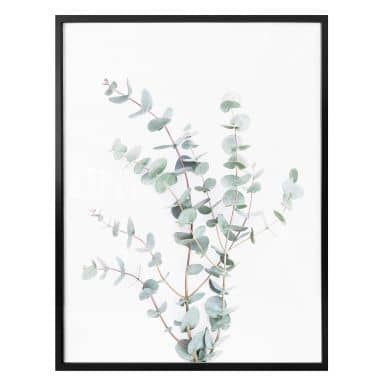 Poster Sisi & Seb - Eucalyptustak