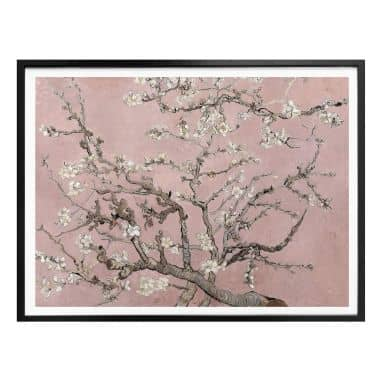 Poster van Gogh - Mandelblüte Rosé