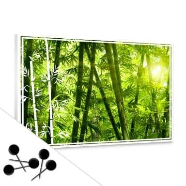 Solrig bambusskov opslagstavle
