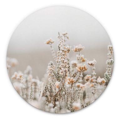 Alu-Dibond Annie - Eisblüten - Rund