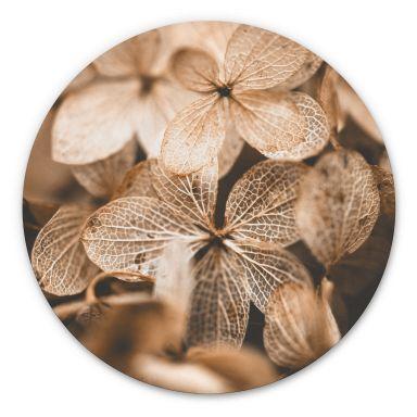 Alu-Dibond Annie - Zarte Blüten - Rund