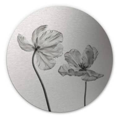 Alu-Dibond mit Silbereffekt Grønkjær - Tulpenblüte - Rund