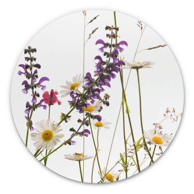 Wandcirkel Kadam - Flora Marguerite