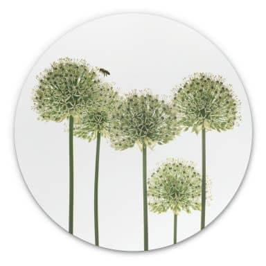 Wandcirkel Kadam - Flora Ornaments
