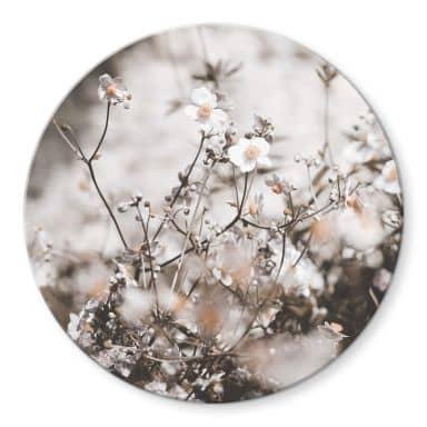 Tableau sur verre Annie - Fleurs sauvages - Rond