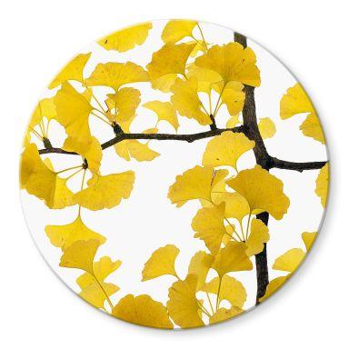 Glasschilderij Kadam - Flora Ginko