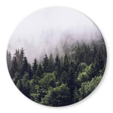Glasbild Nebliger Wald - Rund