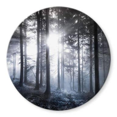 Glasbild Sonnenstrahlen im Wald Blau - Rund