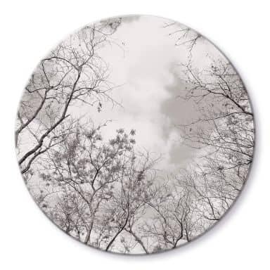 Glasbild Baumkronen im Himmel - Rund