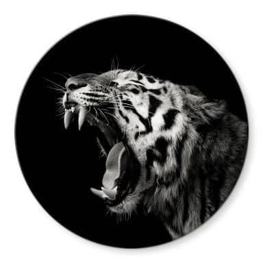 Glasbild Meermann - Der Tiger - Rund