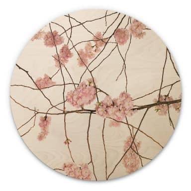 Wandcirkel Hout Kadam - Cherry Blossoms