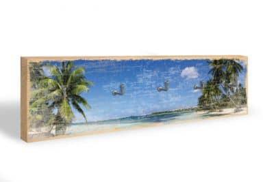 Mar caraibico + 5 ganci