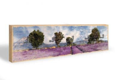Key Holder - Lavender + 5 Hooks