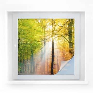 Window foil Golden Autumn