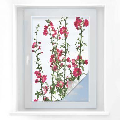 Raamfolie Kadam - Flora Rose
