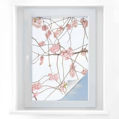Window Foil Kadam - Cherry Blossom