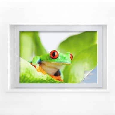 Window foil Green Frog