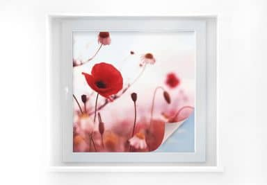 Window foil Poppies – square