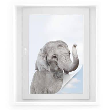 Raamsticker Sisi & Seb - Baby Elephant