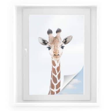 Raamfolie Sisi & Seb - Baby Giraffe