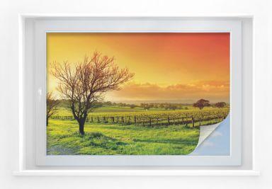 Window foil Vineyard
