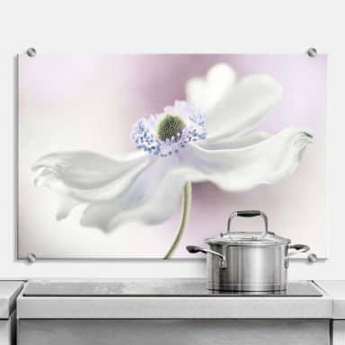 Spatscherm Disher - Anemone Breeze