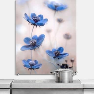 Spritzschutz Disher - Blue Cosmos