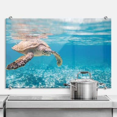 Traveling Turtle - Kitchen Splashback