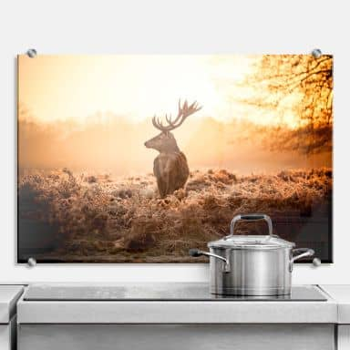 Majestic Deer - Kitchen Splashback