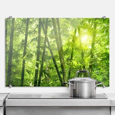 Sunshine in the Bamboo Forest - Kitchen Splashback