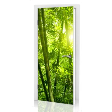 Door decor: Sunshine in a Bamboo Forest