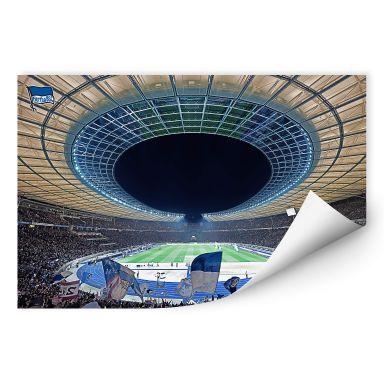Wallprint Hertha BSC - Stadion bei Nacht