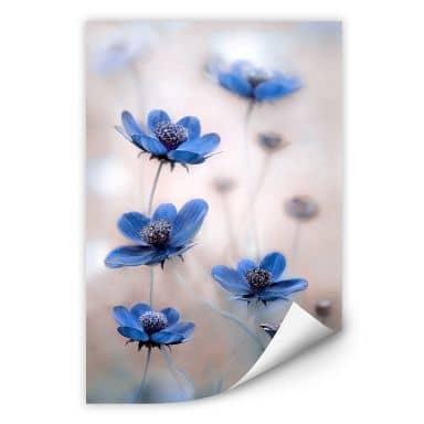Wallprint Disher - Blue Cosmos