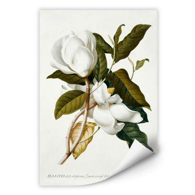 Wall print W - Ehret - Magnolia