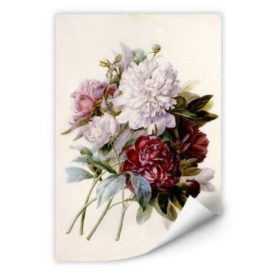Wallprint Redouté - Strauss von roten, lila und weißen Pfingstrosen
