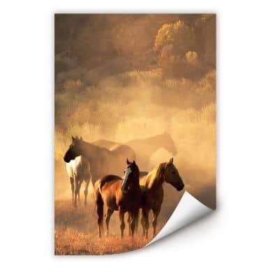 Zelfklevende Poster Power of Horses