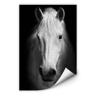 Wallprint W - White Horse