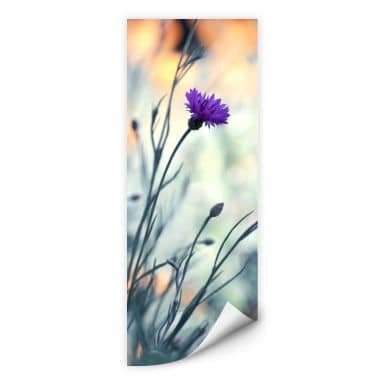 Wallprint Bravin - Luminous purple - Panorama
