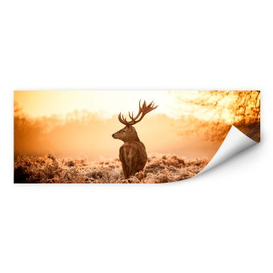 Wall print W - Majestic Deer - Panorama