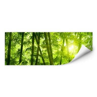 Wallprint W - Sonnenschein im Bambuswald - Panorama