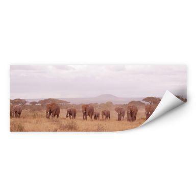 Wallprint W - Elefantenherde