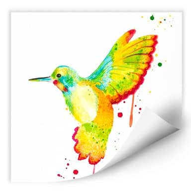 Wallprint W - Buttafly - Kolibri - quadratisch