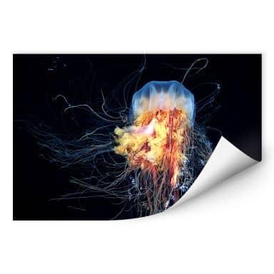 Wallprint Semenov - Amazing Jellyfish