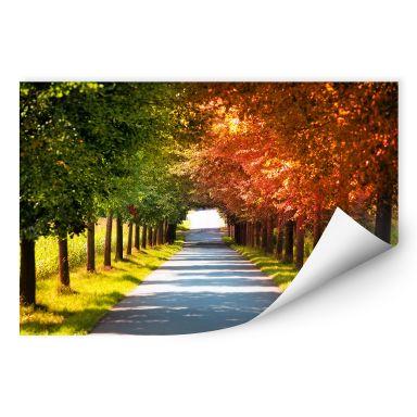 Wallprint W - Herbst