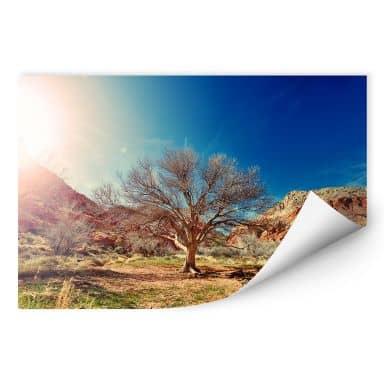 Wallprint Wüstenbaum