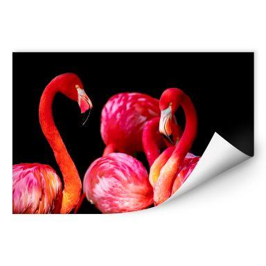 Wallprint Pink Flamingo